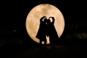 2020년 전남 순천만 달빛 소나타